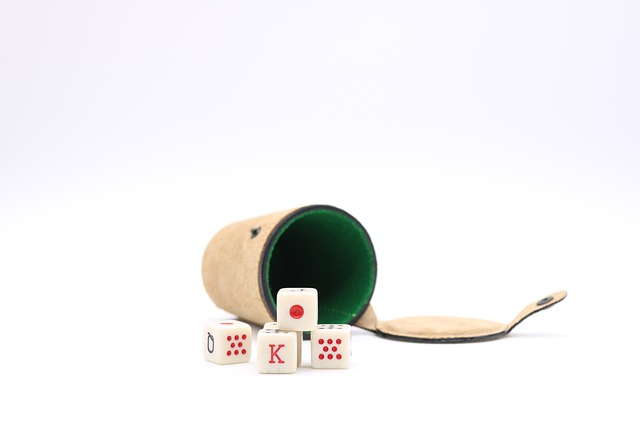 Is An Online Poker Gambling Website Provides The Newbie Ease Of Playing?